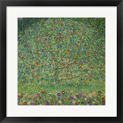 Framed Apple Tree  I, 1912 Print