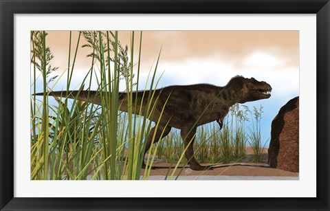 Framed Tyrannosaurus Rex Hunting for Meal Print