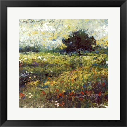 Framed Harmony of Color II Print