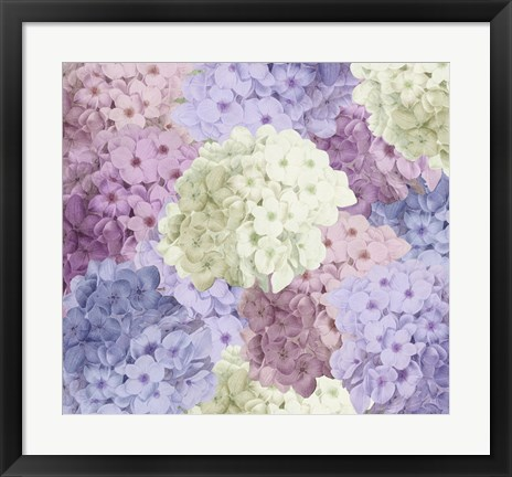 Framed Hortensia Groundless Warm Tones Print