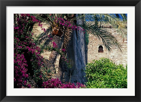 Framed Plams, Flowers and Ramparts of Alcazaba, Malaga, Spain Print