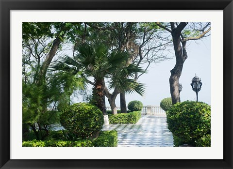 Framed Park in Cadiz, Spain, Europe Print