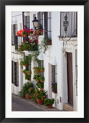 Framed Spain, Andalucia Region, Cadiz, Grazalema Potted plants by a home Print