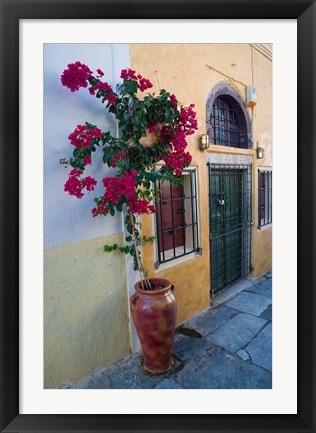 Framed Bougenvillia Vine in Pot, Oia, Santorini, Greece Print