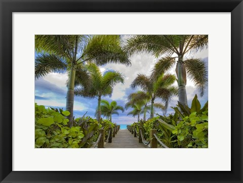 Framed Paradise Path Print