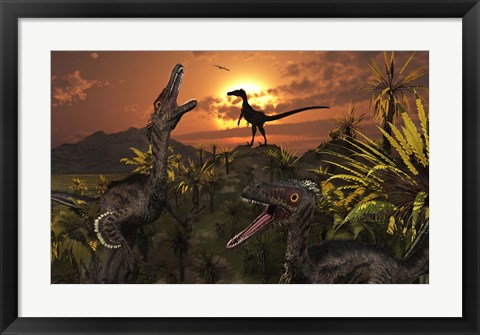 Framed Group of Feathered Carnivorous Velociraptors Print