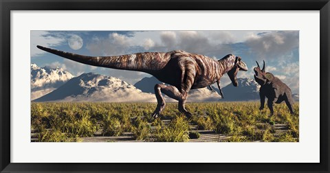 Framed T- Rex and Triceratops meet for a Battle 3 Print