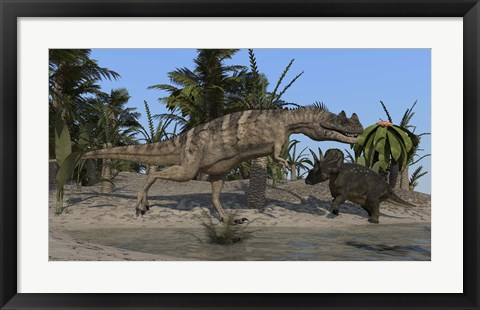 Framed Ceratosaurus Hunting down a Triceratops Print