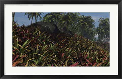 Framed Triceratops Grazing on Lush Foliage Print