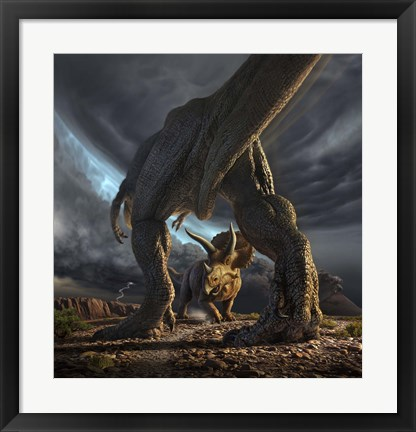 Framed Tyrannosaurus Rex and Triceratops in a Face Off Print