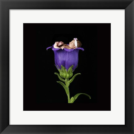 Framed Parsons Purple Baby Print
