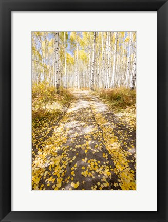 Framed Road To Fall Print