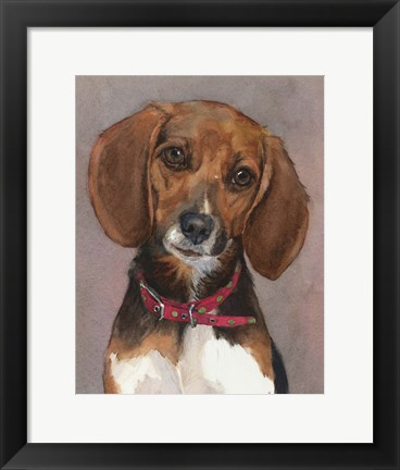 Framed Lucy English Pocket Beagle Print