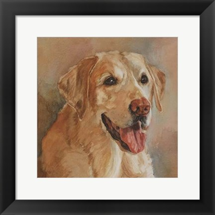 Framed Calie Yellow Lab Print