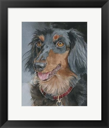 Framed Bongo Long-haired Dachshund Print