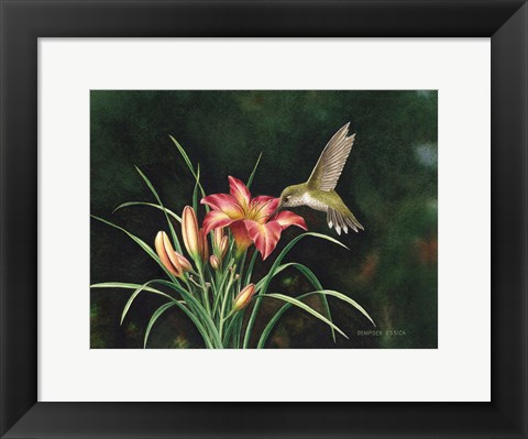 Framed Ruby's Day Lily Print
