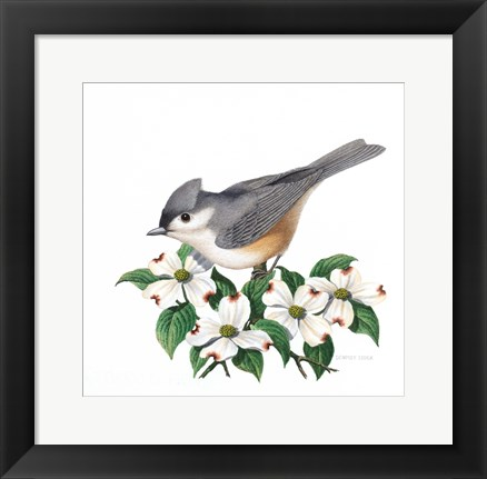 Framed Studio Friends - Titmouse Print