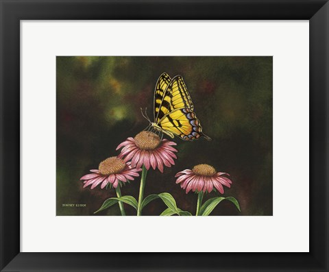 Framed Picking Coneflowers Print