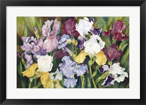 Framed Multi Colored Field Of Iris Print