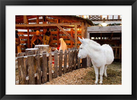 Framed Live Nativity Display Print