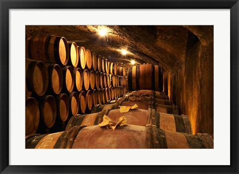 Framed Wooden Barrels with Aging Wine in Cellar Print