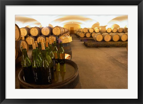 Framed Barrel cellar, Cote d Or, Burgundy, France Print
