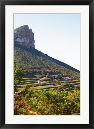 Framed Cassis Cliff, Sea and Vineyards on the Slope Print