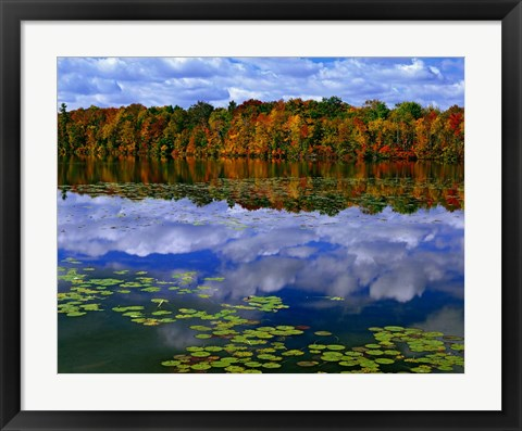 Framed Park Haven Lake in Autumn Print