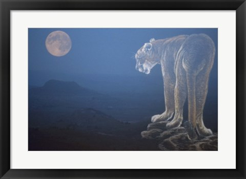 Framed Tiger And Full Moon Print