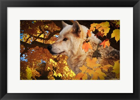 Framed Autumn Leaves and Wolf Print