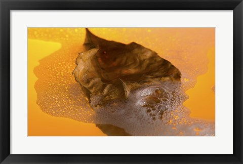 Framed Floating Fall Leaf II Print