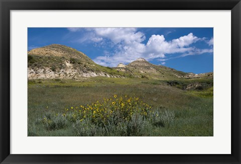 Framed Wildflowers And Mountiains With Clouds Print