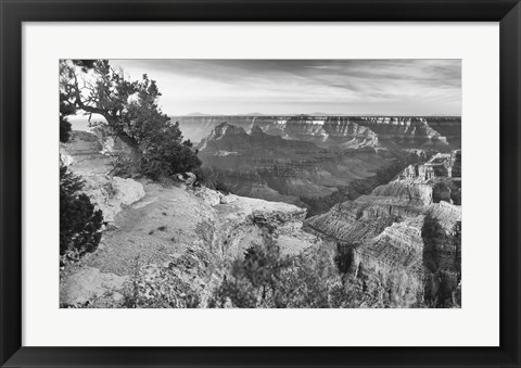 Framed Grand Canyon 1 Print
