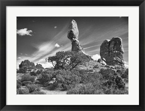 Framed High Rock And Tree Print