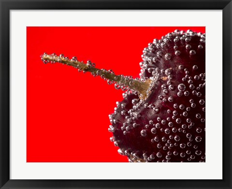 Framed Cherry Covered In Water Drops II Print