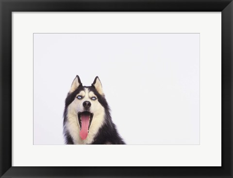 Framed Open Mouth Moody Blues Print