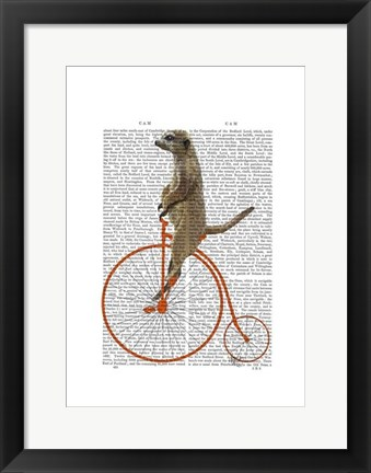 Framed Meerkat on Orange Penny Farthing Print