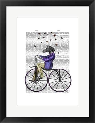 Framed Zebra On Bicycle Print