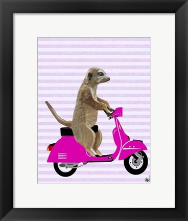 Framed Meerkat on Pink Moped Print