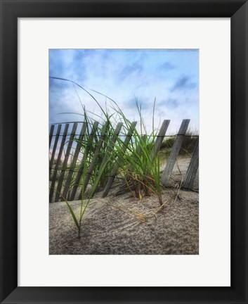 Framed Beach Grass With Fence And Border Print