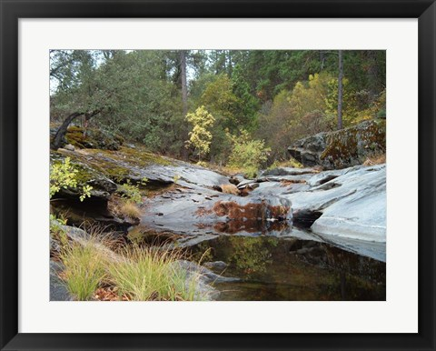 Framed Lake In The Forest 1 Print