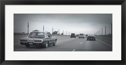 Framed T Bird Print