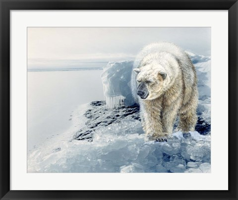 Framed Polar Dawn Print