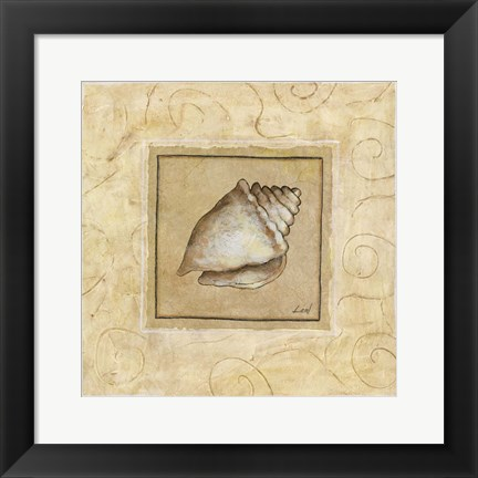 Framed Conch Shell Print