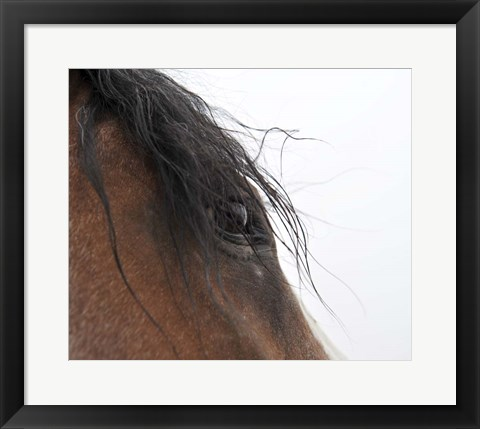 Framed Whips Eye Print