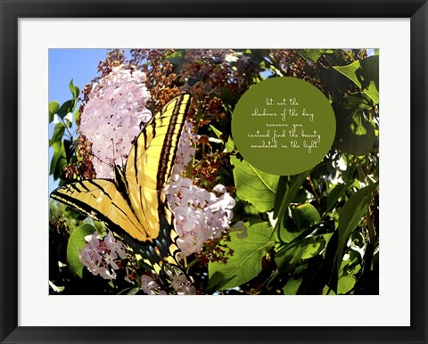 Framed Junes Yellow Monarch Print