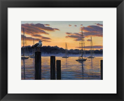 Framed Sea Gull And Sails Print