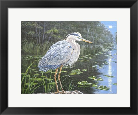 Framed Blue Heron Moon Print