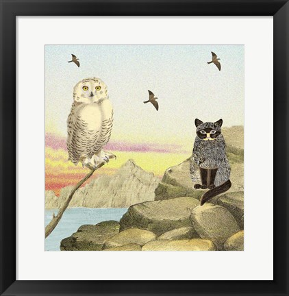 Framed Owl and Pussycat 13 Print