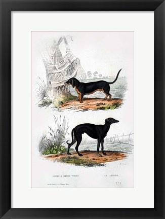Framed Pair of Dogs III Print